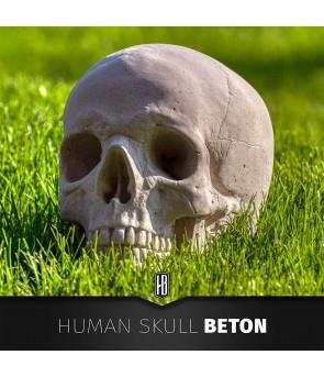 SCHÄDEL AUS BETON / HUMAN...
